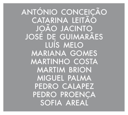 Martim Brion - Colectiva - Galeria Vera Cruz Sofia Areal Pedro Calapez Jose de Guimaraes etc