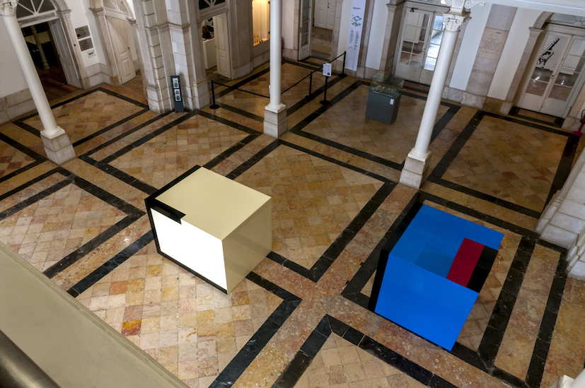 Martim Brion,Museu de Historia Natural e da Ciencia, Lisboa